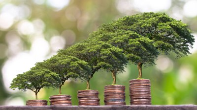 Plant Your Change to help the environment.