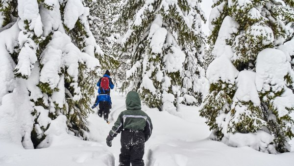Snowshoeing in the wilderness in winter