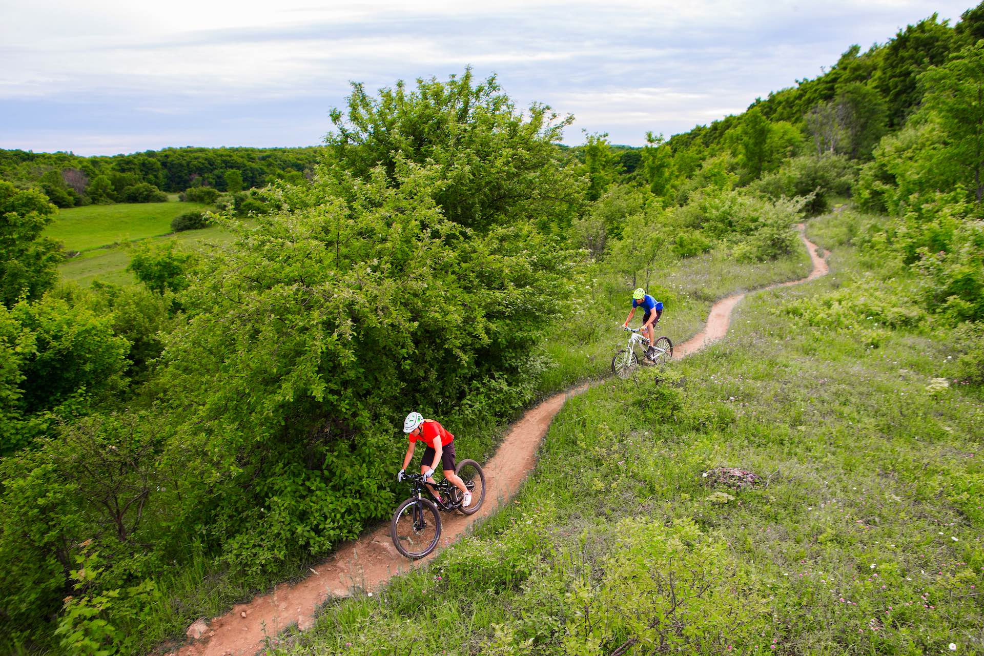 mountain biking trail singletrack