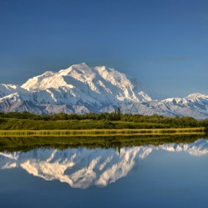 Alaska Offers Free Vaccines to Tourists: Alaska vaccines