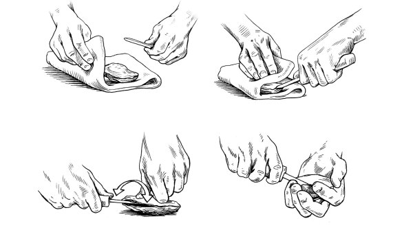 Illustration of shucking an oyster