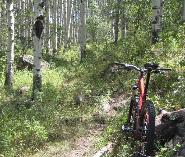 Ride the Palisade Plunge trail in Palisade, Colorado