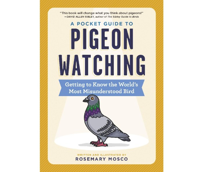 A Pocket Guide to Pigeon Watching: Getting to Know the World's Most Misunderstood Bird by Rosemary Mosco