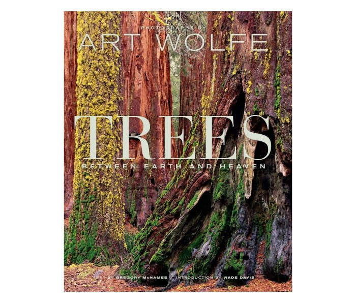 Trees: Between Earth and Heaven by Gregory McNamee (author) and Art Wolfe (photographer)