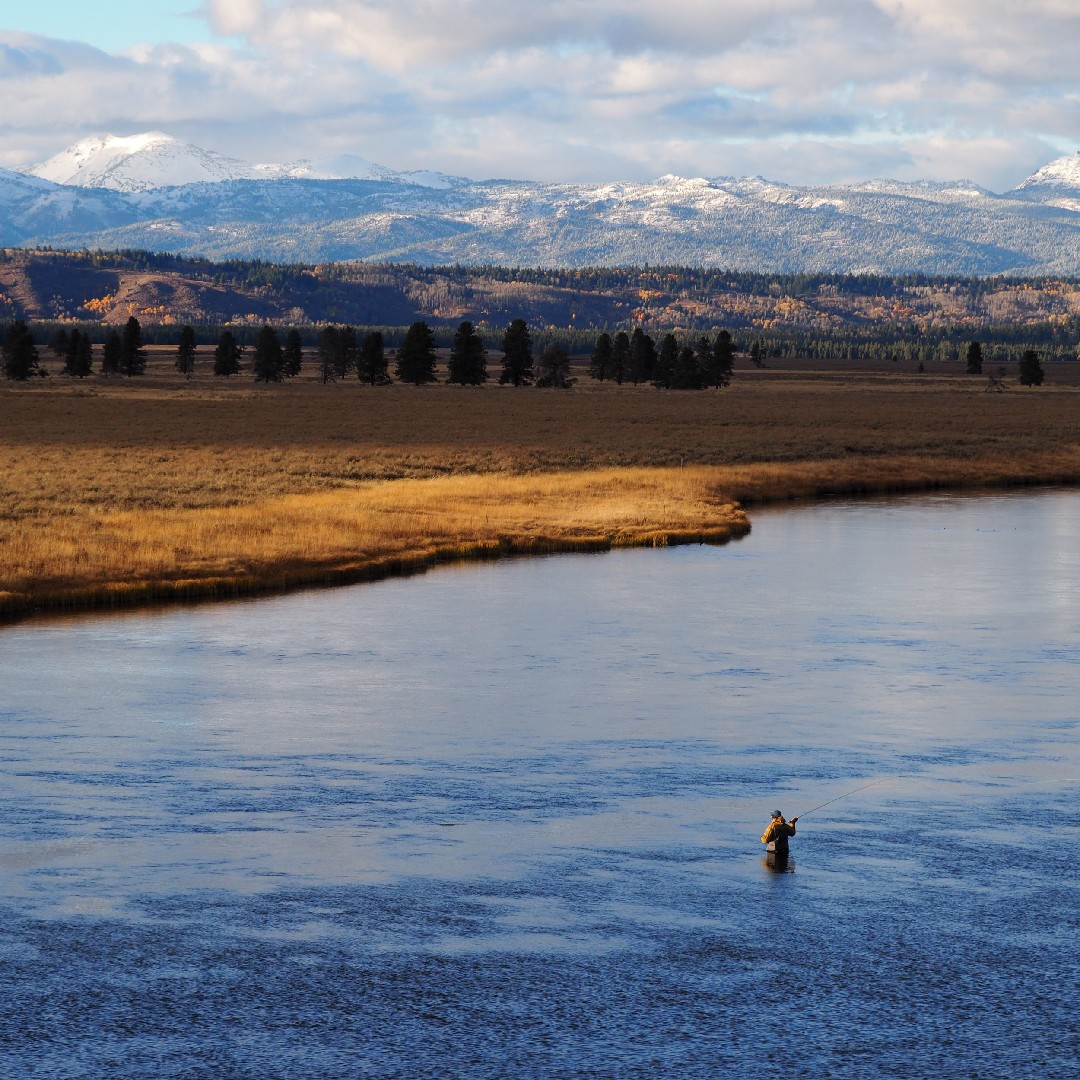 Honing the craft of fly-fishing with School of Trout.