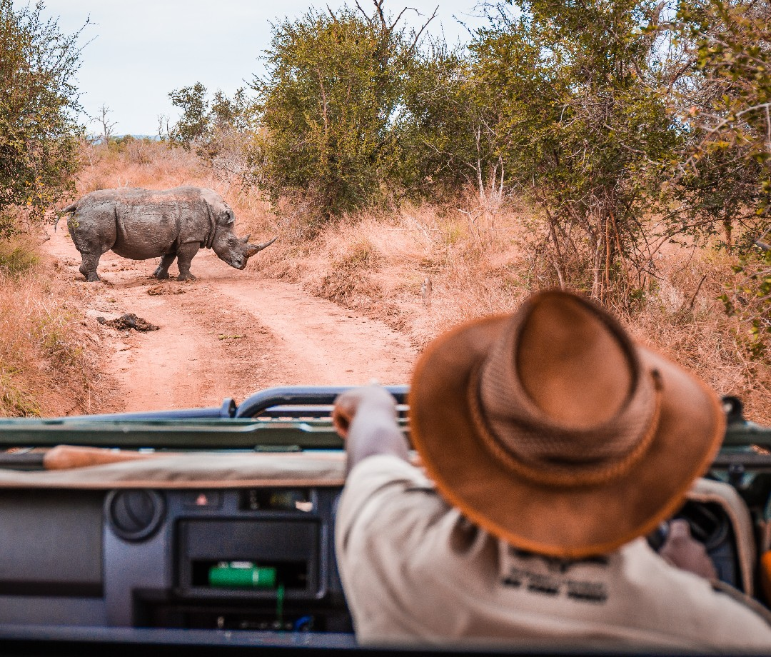 Tips for International Travel: Tailor-made tours