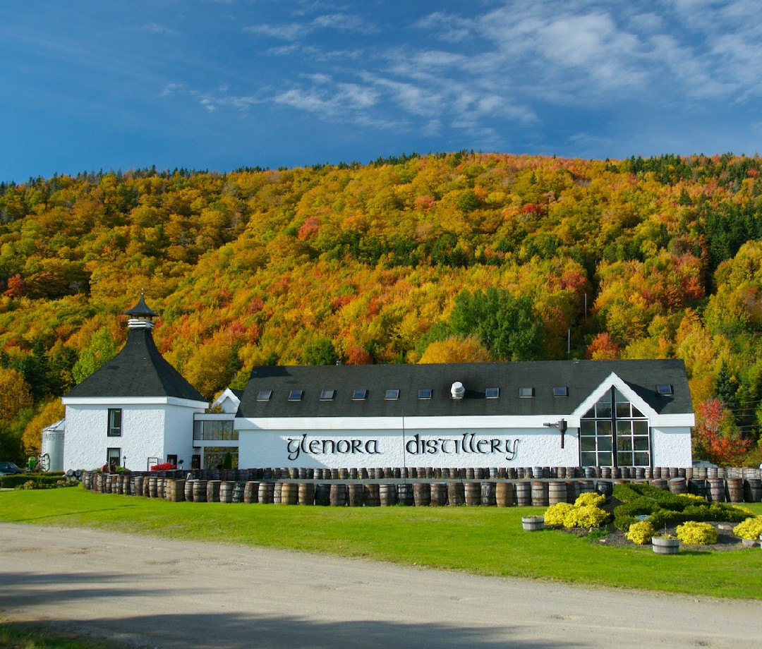 The Glenora Distillery, a long white building surrounded by barrels, with a hill covered with fall foliage in the background.