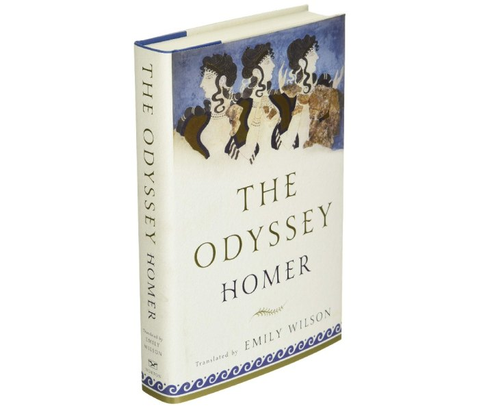 The book cover for The Odyssey by Homer, translated by Emily Wilson
