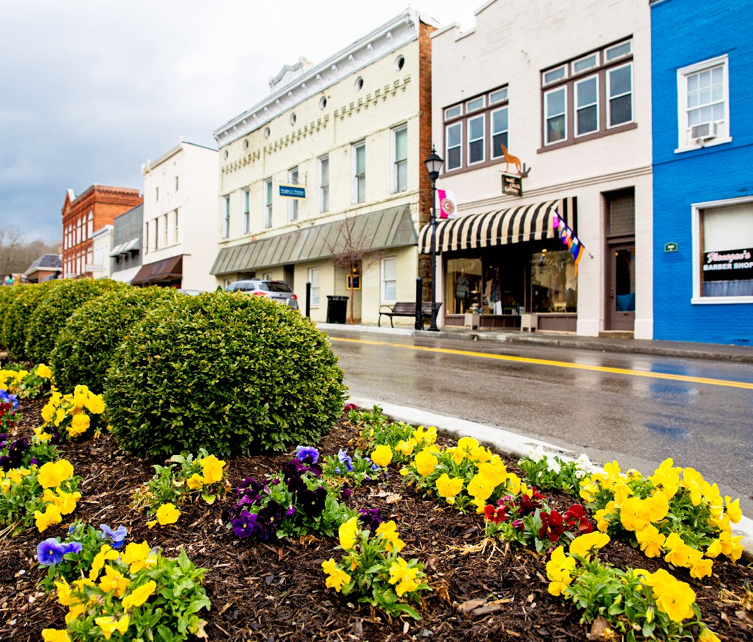 A view of the main street of Lewisburg, West Virginia. Flowers are in the foreground and local businesses line the street.