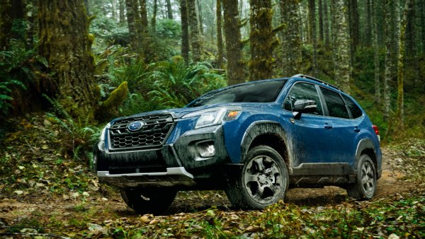 subaru forester wilderness driving in a forest