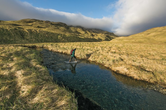 Just a handful of residents on Adak means ditching them isn't hard.