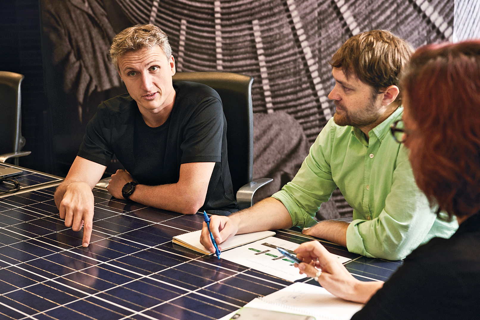 Elon Musk, Lyndon Rive, and the Plan to Put Solar Panels on Every