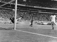 Pele's Save of the Century
