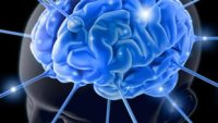 25 Ways to Make Your Brain More Efficient