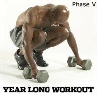 Year Long Workout: Phase V, Workout D