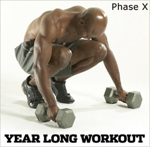 Year Long Workout: Phase X, Workout A