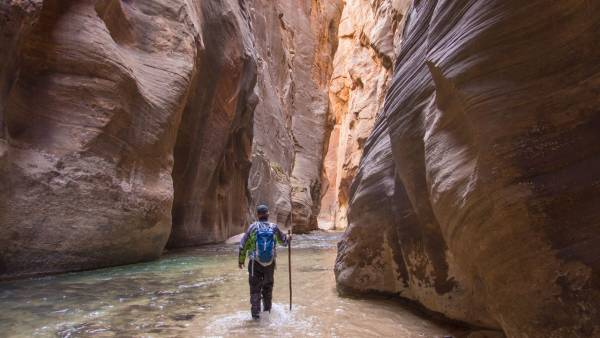 Man In The National Zion Park