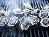 Simple Grilled Oysters