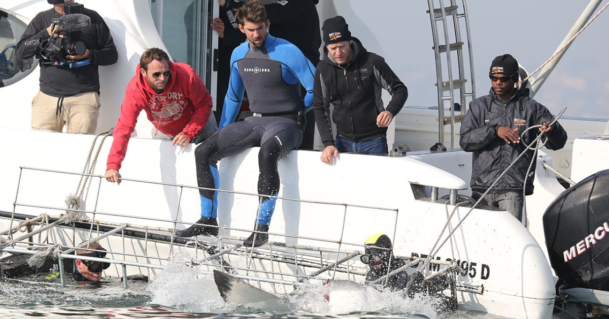 Michael Phelps on His Shark Week Showdown and Why He Hasn't Slowed Down Since Retirement