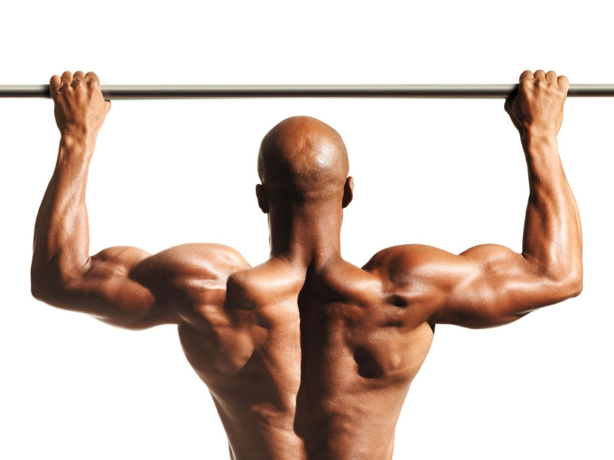 The ripped back workout