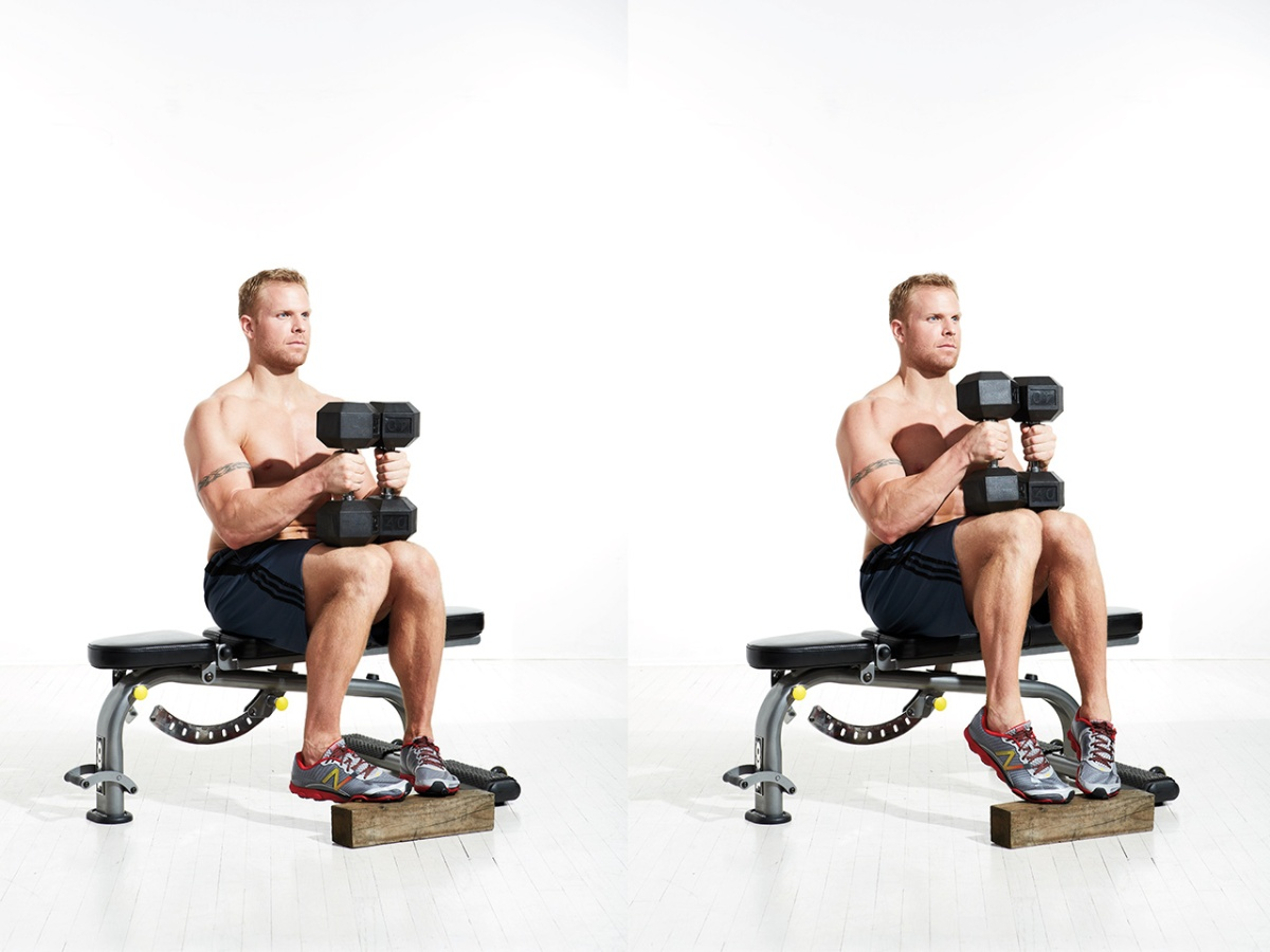 Image result for Seated Calf Raise