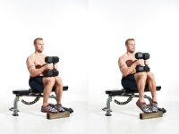 Seated Calf Raise - Toes In