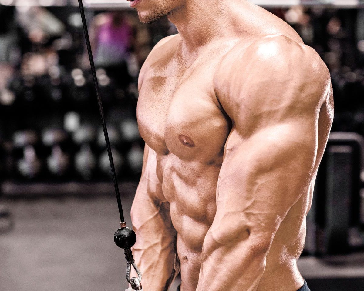 How To Get Triceps That Look Like Horseshoes
