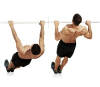 2. Inverted row