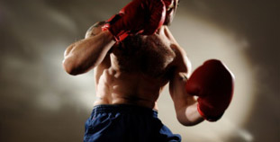 Flab Fighter
