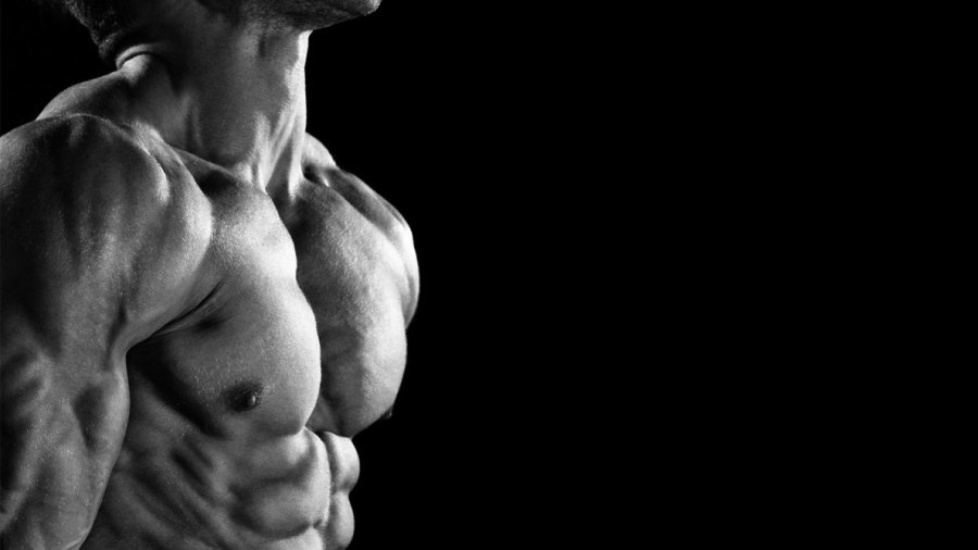 The 21-Day Shred Exercise and Diet Program