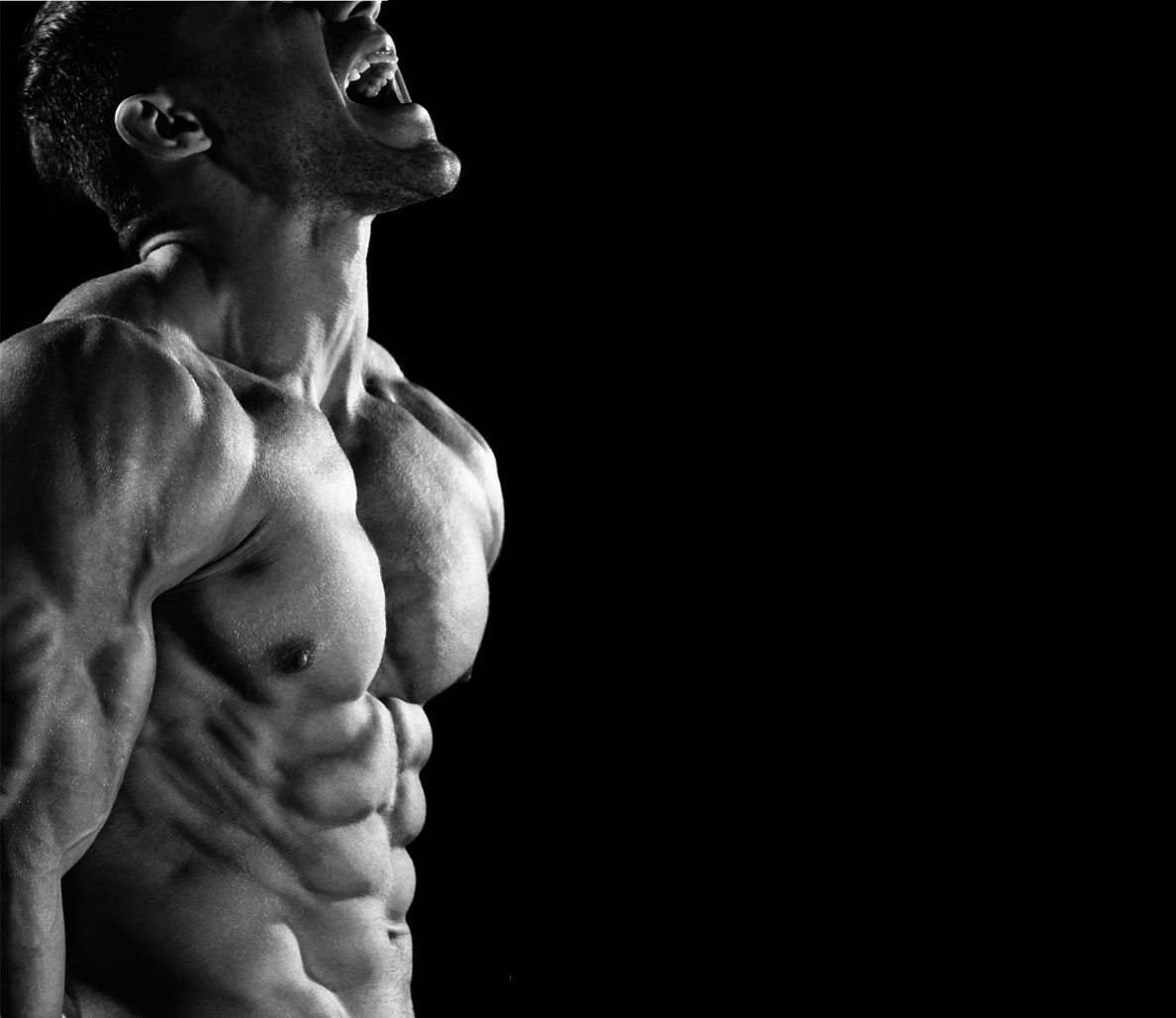 Build the Perfect Body with The 21-Day Shred Workout Series