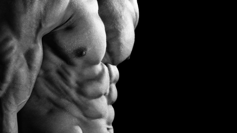 The Original 21 Day Shred Ab Workout