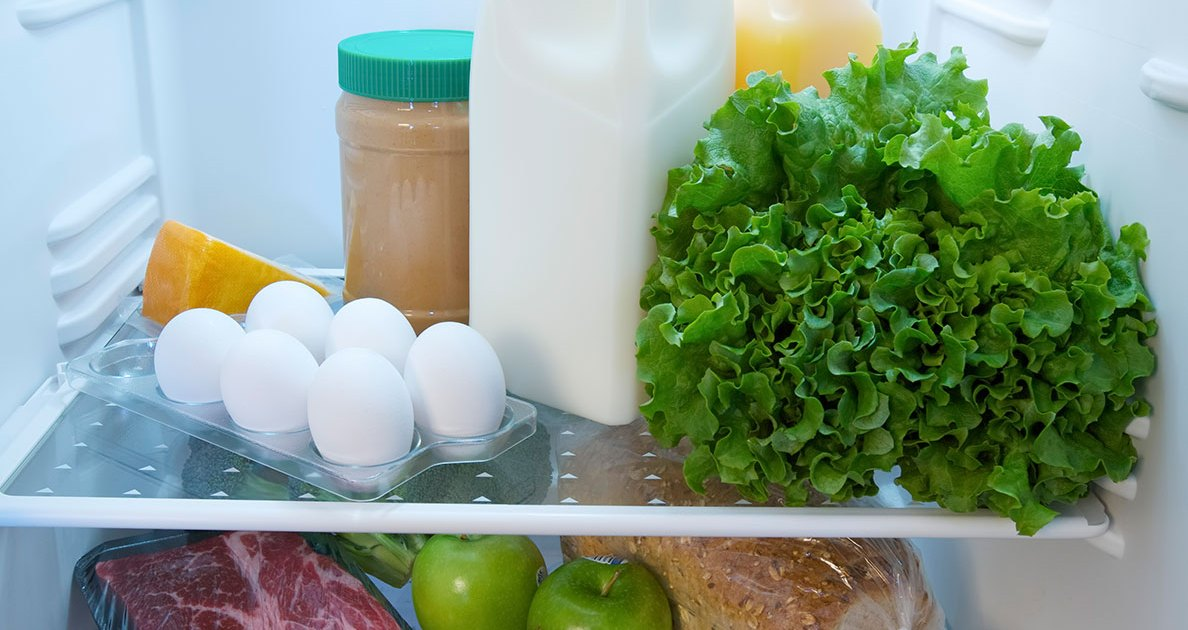"10 Ways to Turn Your Refrigerator Into a ""Shred-er-rator"""