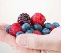 Berries, Grapes and Apples Turn White Fat Into Calorie-Burning Beige Fat