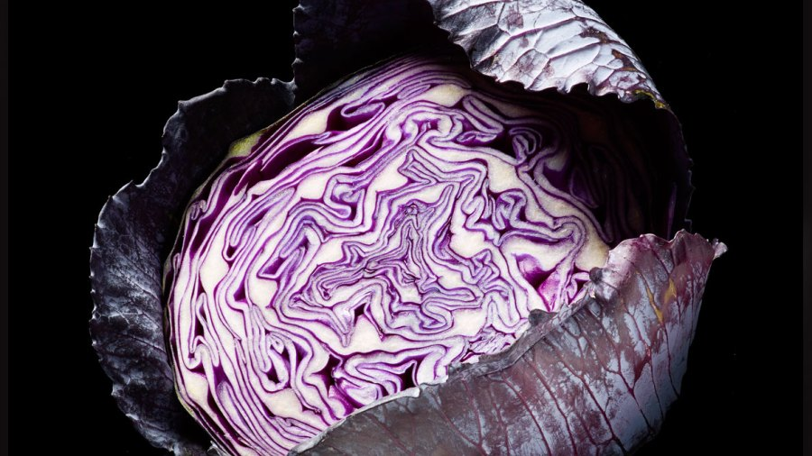 The Best Coleslaw You Ever Made