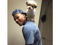 Sports Stars and Their Pets: 25 Athletes and Their Awesome Animal Buddies