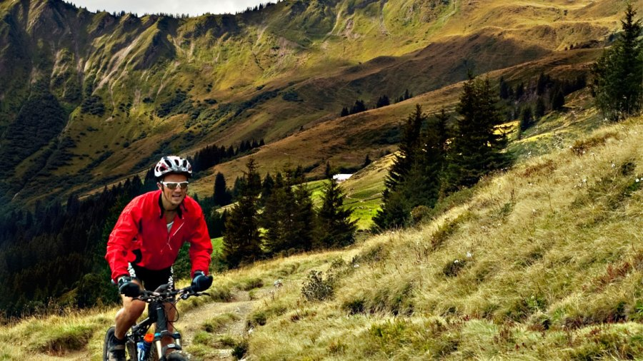 Go Cycling in the Alps