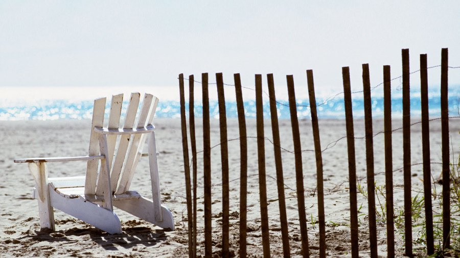 Your Local Beach Might Have a Poop Problem