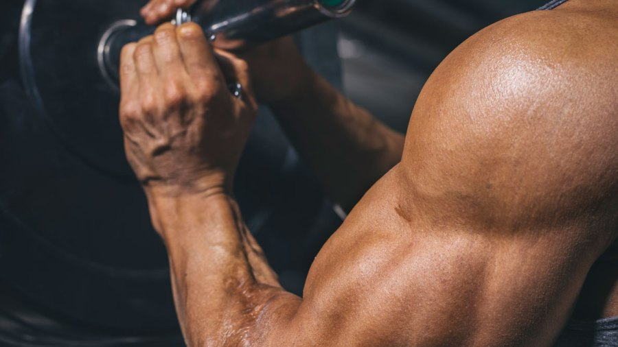 Brachialis Training: How to Get That 'golf Ball' Between Your Biceps and Triceps