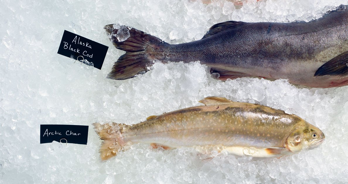 The best fish to buy at your supermarket for Fish to buy