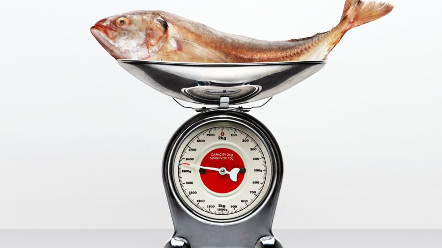 5 Rules for Buying Fish Without Getting Completely Screwed