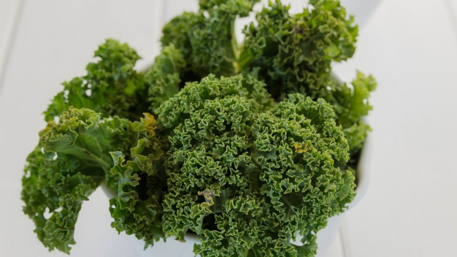 Should You Stop Eating Kale Salad Every Day?