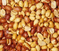 This New Variety of Peanut Will Change the PB Game Forever