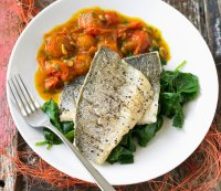 Fish Protein: The Top 10 Fish Proteins, Ranked