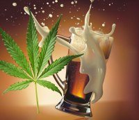 Suds and Buds: a Colorado Brewery Has Created Marijuana-Infused Beer