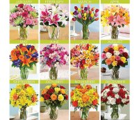 Pro Flowers 12 Months of Flowers