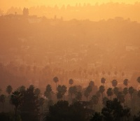 How Air Pollution Is Killing Your Heart, Aging Your Skin, and Destroying the Environment