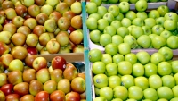 Apples can benefit your body. Here are some easy ways to work them into your diet.