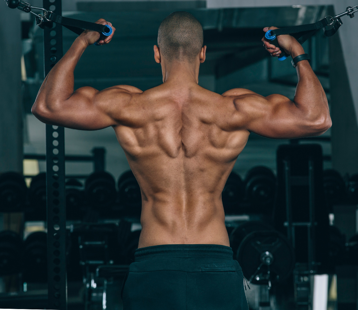 836f4611 How to Increase Your Muscle Definition
