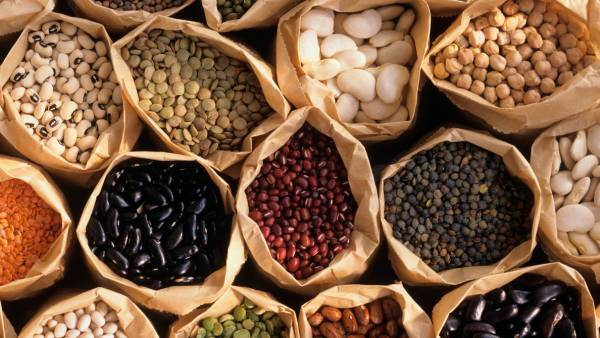 7 cheap sources of healthy protein